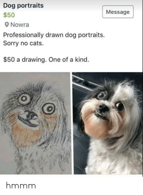 Cats, Sorry, and Dog: Dog portraits  Message  $50  Nowra  Professionally drawn dog portraits.  Sorry no cats.  $50 a drawing. One of a kind. hmmm