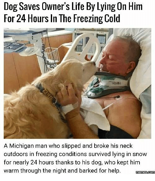 necking: Dog Saves Owner's Life By Lying On Him  For 24 Hours In The Freezing Cold  A Michigan man who slipped and broke his neck  outdoors in freezing conditions survived lying in snow  for nearly 24 hours thanks to his dog, who kept him  warm through the night and barked for help