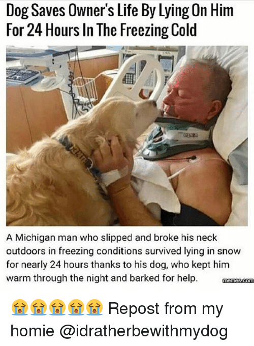 Freezing Cold: Dog Saves Owner's Life By Lying On Him  For 24 Hours In The Freezing Cold  A Michigan man who slipped and broke his neck  outdoors in freezing conditions survived lying in snow  for nearly 24 hours thanks to his dog, who kept him  warm through the night and barked for help. menascom 😭😭😭😭😭 Repost from my homie @idratherbewithmydog