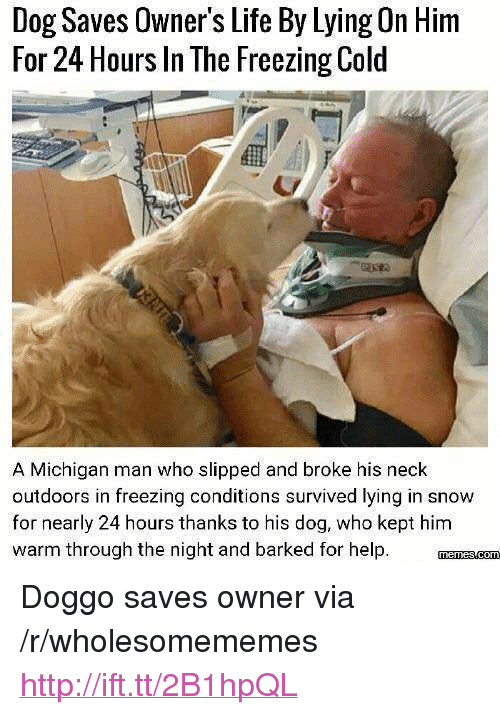"""Freezing Cold: Dog Saves Owner's Life By Lying On Him  For 24 Hours In The Freezing Cold  A Michigan man who slipped and broke his neck  outdoors in freezing conditions survived lying in snow  for nearly 24 hours thanks to his dog, who kept him  warm through the night and barked for help <p>Doggo saves owner via /r/wholesomememes <a href=""""http://ift.tt/2B1hpQL"""">http://ift.tt/2B1hpQL</a></p>"""