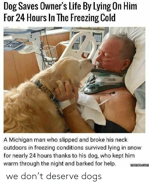 Michigan: Dog Saves Owner's Life By Lying On Him  For 24 Hours In The Freezing Cold  A Michigan man who slipped and broke his neck  outdoors in freezing conditions survived lying in snow  for nearly 24 hours thanks to his dog, who kept him  warm through the night and barked for help we don't deserve dogs