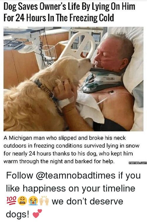 Freezing Cold: Dog Saves Owner's Life By Lying On Hinm  For 24 Hours In The Freezing Cold  A Michigan man who slipped and broke his neck  outdoors in freezing conditions survived lying in snow  for nearly 24 hours thanks to his dog, who kept him  warm through the night and barked for help. manzscom Follow @teamnobadtimes if you like happiness on your timeline 💯😩😭🙌🏼 we don't deserve dogs! 💕