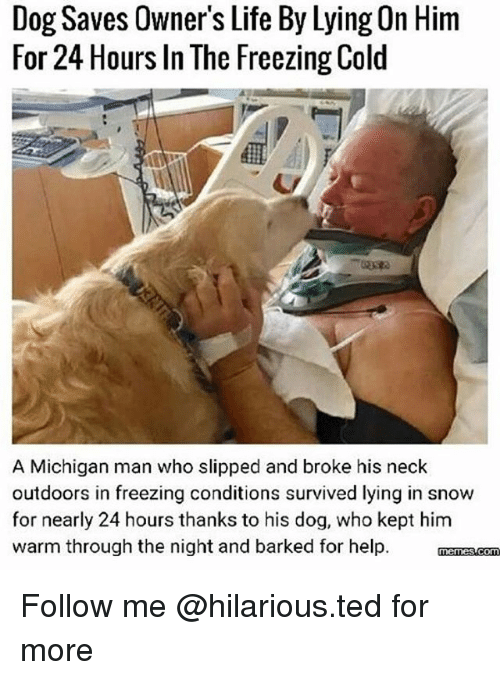 Freezing Cold: Dog Saves Owner's Life By Lying On Hirm  For 24 Hours In The Freezing Cold  A Michigan man who slipped and broke his neck  outdoors in freezing conditions survived lying in snow  for nearly 24 hours thanks to his dog, who kept him  warm through the night and barked for help. manss.com Follow me @hilarious.ted for more