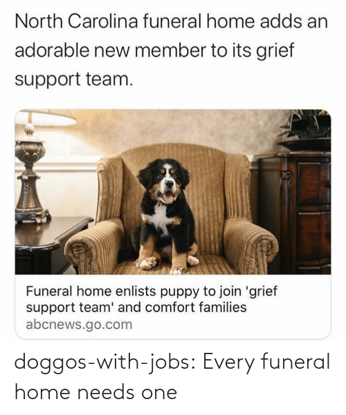 Jobs: doggos-with-jobs:  Every funeral home needs one