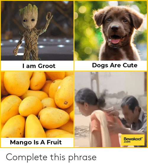 Cute, Dogs, and Memes: Dogs Are Cute  l am Groot  Bewakoof  .com  Mango Is A Fruit Complete this phrase