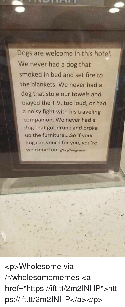 """Dogs, Drunk, and Fire: Dogs are welcome in this hotel.  We never had a dog that  smoked in bed and set fire to  the blankets. We never had a  dog that stole our towels and  played the T.V. too loud, or had  a noisy fight with his traveling  companion. We never had a  dog that got drunk and broke  up the furniture....So if your  dog can vouch for you, you're  welcome too. The otanagement <p>Wholesome via /r/wholesomememes <a href=""""https://ift.tt/2m2INHP"""">https://ift.tt/2m2INHP</a></p>"""
