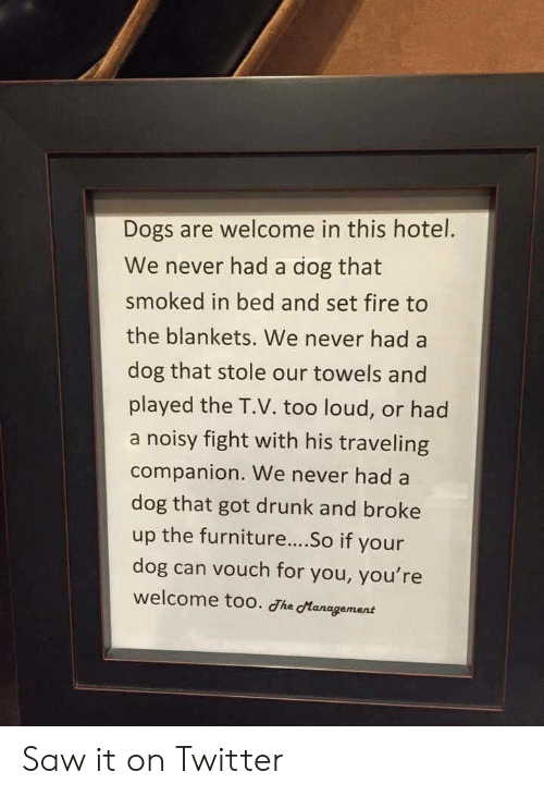 Dogs, Drunk, and Fire: Dogs are welcome in this hotel.  We never had a dog that  smoked in bed and set fire to  the blankets. We never had a  dog that stole our towels and  played the T.V. too loud, or had  a noisy fight with his traveling  companion. We never had a  dog that got drunk and broke  up the furniture....So if your  dog can vouch for you, you're  welcome too. he dtanagement Saw it on Twitter