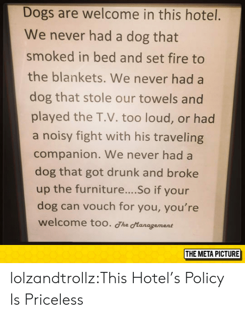Dogs, Drunk, and Fire: Dogs are welcome in this hotel.  We never had a dog that  smoked in bed and set fire to  the blankets. We never had a  dog that stole our towels and  played the T.V. too loud, or had  a noisy fight with his traveling  companion. We never had a  dog that got drunk and broke  up the furniture....So if your  dog can vouch for you, you're  welcome too. The Hanagement  THE META PICTURE lolzandtrollz:This Hotel's Policy Is Priceless