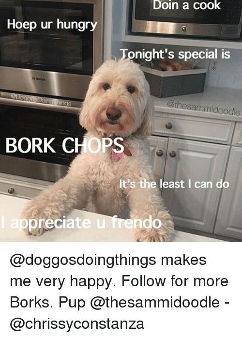 Borked: Doin a cook  Hoep ur hungry  Tonight's special is  @thesammidoodle  BORK CHOPS  It's the least I can do  ep  preciate u frendo @doggosdoingthings makes me very happy. Follow for more Borks. Pup @thesammidoodle - @chrissyconstanza