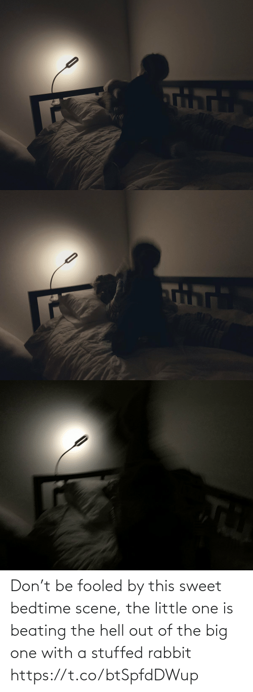 beating: Don't be fooled by this sweet bedtime scene, the little one is beating the hell out of the big one with a stuffed rabbit https://t.co/btSpfdDWup
