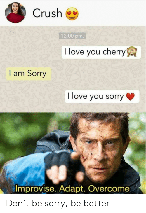 Sorry: Don't be sorry, be better