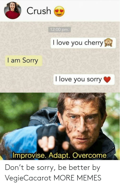 Sorry: Don't be sorry, be better by VegieCacarot MORE MEMES