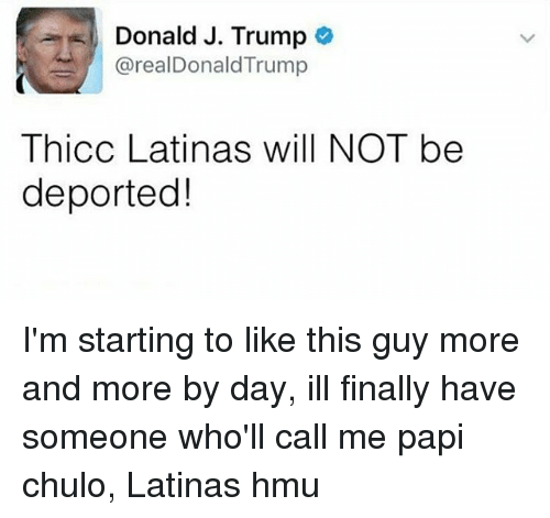 Memes, 🤖, and Hmu: Donald J. Trump  arealDonaldTrump  Thicc Latinas will NOT be  deported! I'm starting to like this guy more and more by day, ill finally have someone who'll call me papi chulo, Latinas hmu