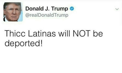 Trump, Will, and Thicc: Donald J. Trump  Donald J. Trump *  : @realDonaldTrump  Thicc Latinas will NOT be  deported!