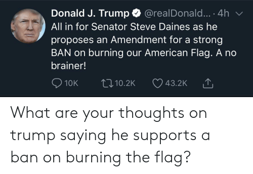 American, American Flag, and Trump: Donald J. Trump  @realDonald... .4h  All in for Senator Steve Daines as he  proposes an Amendment for a strong  BAN on burning our American Flag. A no  brainer!  10K  10.2K  43.2K What are your thoughts on trump saying he supports a ban on burning the flag?