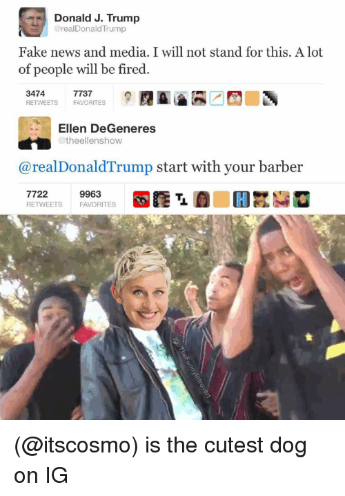Ellen Degenerates: Donald J. Trump  @realDonald Trump  Fake news and media. I will not stand for this. A lot  of people will be fired  3474  7737  RETWEETS  FAVORITES  Ellen DeGeneres  @theellenshow  real Donald Trump start with your barber  7722  9963  RETWEETS FAVORITES (@itscosmo) is the cutest dog on IG