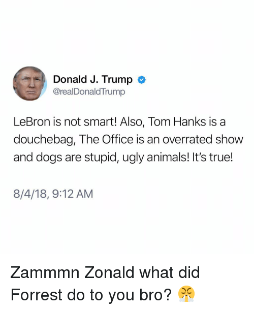 Animals, Dogs, and Douchebag: Donald J. Trump  @realDonaldTrump  LeBron is not smart! Also, Tom Hanks is a  douchebag, The Office is an overrated show  and dogs are stupid, ugly animals! It's true!  8/4/18, 9:12 AM Zammmn Zonald what did Forrest do to you bro? 😤
