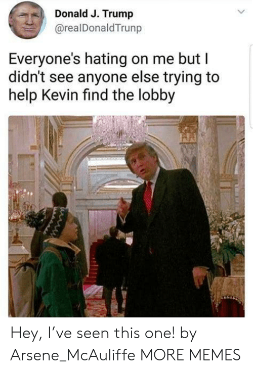 Dank, Memes, and Target: Donald J. Trump  @realDonaldTrunp  Everyone's hating on me but I  didn't see anyone else trying to  help Kevin find the lobby Hey, I've seen this one! by Arsene_McAuliffe MORE MEMES