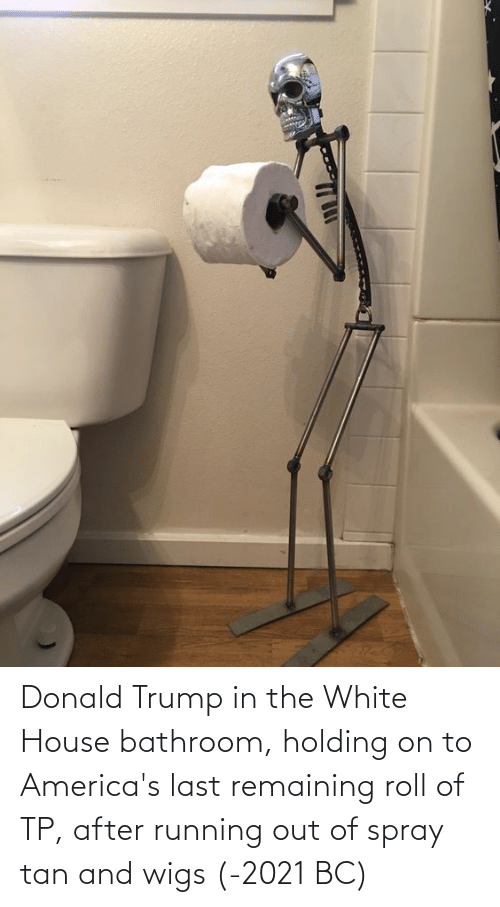 Donald Trump: Donald Trump in the White House bathroom, holding on to America's last remaining roll of TP, after running out of spray tan and wigs (-2021 BC)
