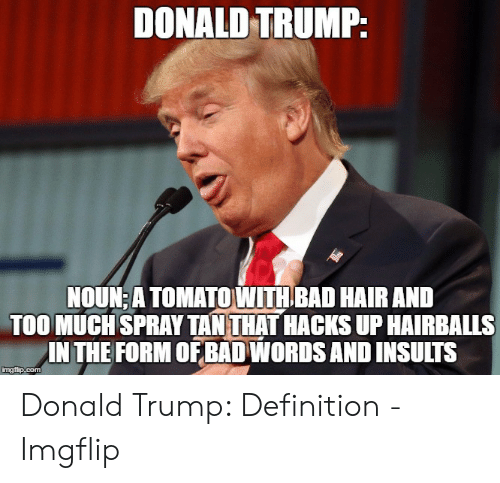 Define Meme: DONALD TRUMP:  NOUNEA TOMATOWITH BAD HAIR AND  TOO MUCHSPRAY TAN THAT HACKS UP HAIRBALLS  IN THE FORM OF BAD WORDS AND INSULTS Donald Trump: Definition - Imgflip