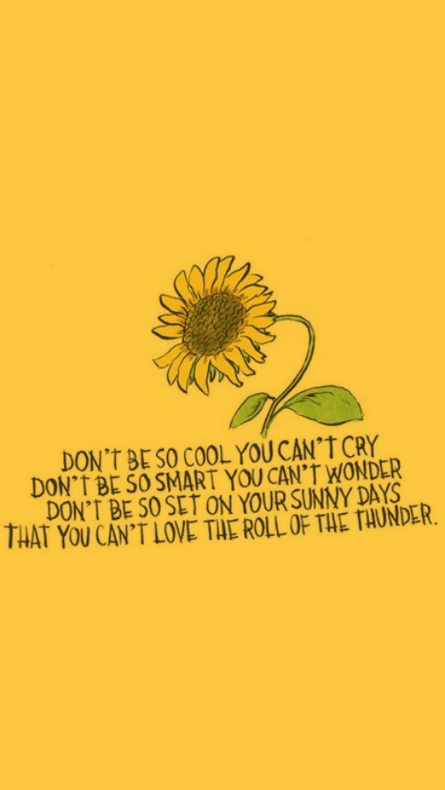 sunny: DON'T BESO COOL YOU CAN'T CRY  DON'T BL SO SMART YOU CAN'T WONDER  DON'T BE S0 SET ON YOUR SUNNY DAYS  THAT YOU CAN'T LOVE TAE ROLL OF THE TAUNDER