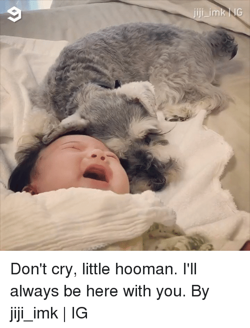 jiji: Don't cry, little hooman. I'll always be here with you.  By jiji_imk | IG