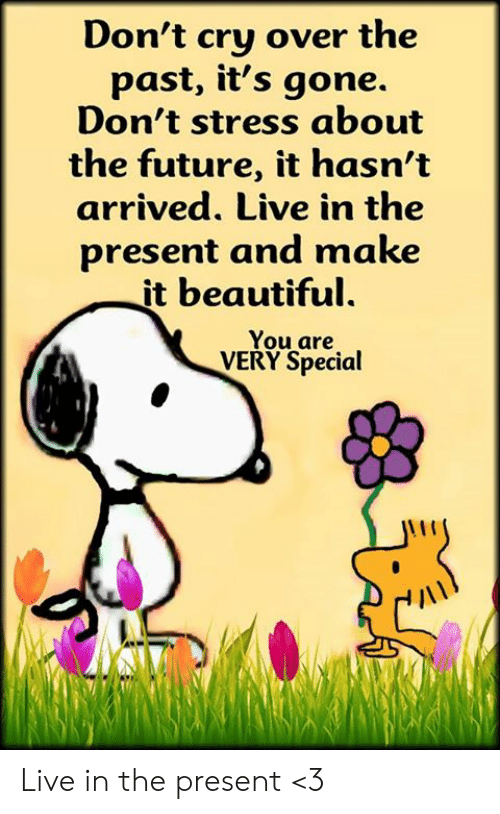 Beautiful, Future, and Memes: Don't cry over the  past, it's gone.  Don't stress about  the future, it hasn't  arrived. Live in the  present and make  it beautiful.  You are  VERY Special Live in the present <3