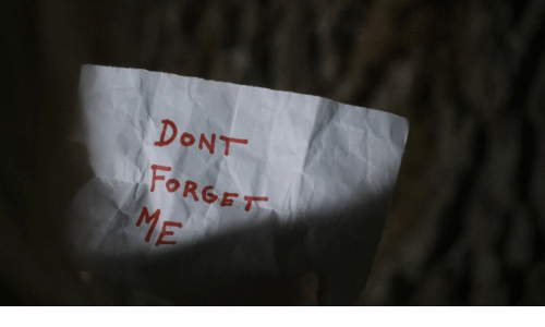 Dont,  Don't Forget, and Forget: DONT  FORGET