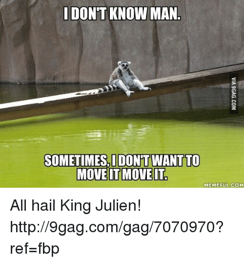 It Meme: DONT KNOW MAN  SOMETIMES IDONT WANT TO  MOVE IT MOVE IT  MEME FUL COM All hail King Julien! http://9gag.com/gag/7070970?ref=fbp