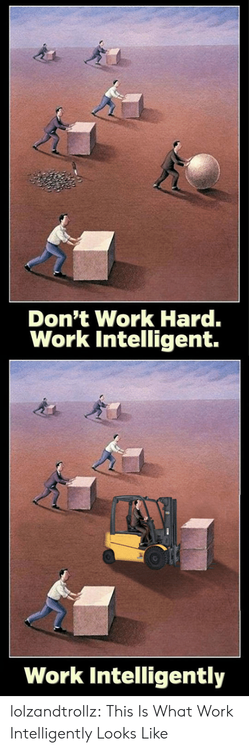 Tumblr, Work, and Blog: Don't Work Hard.  Work Intelligent.  Work Intelligently lolzandtrollz:  This Is What Work Intelligently Looks Like