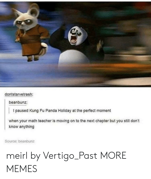 Kung Fu Panda: dontstarvetrash:  beanbunz:  I paused Kung Fu Panda Holiday at the perfect moment  when your math teacher is moving on to the next chapter but you still don't  know anything  Source: beanbunz meirl by Vertigo_Past MORE MEMES