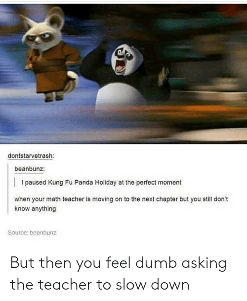 Kung Fu Panda: dontstarvetrash:  beanbunz:  I paused Kung Fu Panda Holiday at the perfect moment  when your math teacher is moving on to the next chapter but you still don't  know anything  Source: beanbunz But then you feel dumb asking the teacher to slow down