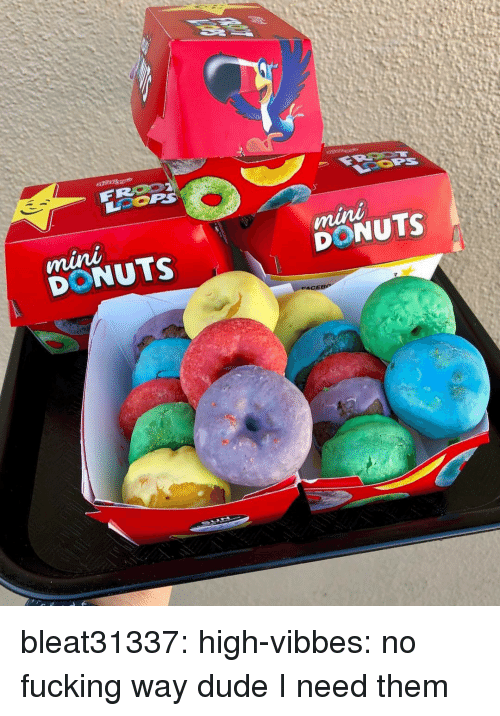 Dude, Fucking, and Tumblr: DONUTS  DONUTS bleat31337: high-vibbes: no fucking way dude   I need them