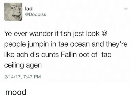 Ooting: @Doopiss  Ye ever wander if fish jest look @  people jumpin in tae ocean and they're  like ach dis cunts Fallin oot of tae  ceiling agen  2/14/17, 7:47 PM mood