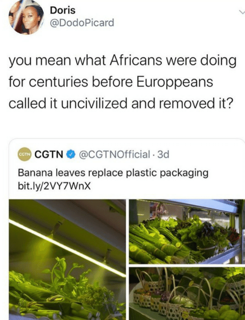 Bit: Doris  @DodoPicard  you mean what Africans were doing  for centuries before Europpeans  called it uncivilized and removed it?  CGTN O @CGTNOfficial · 3d  CTN  Banana leaves replace plastic packaging  bit.ly/2VY7WNX