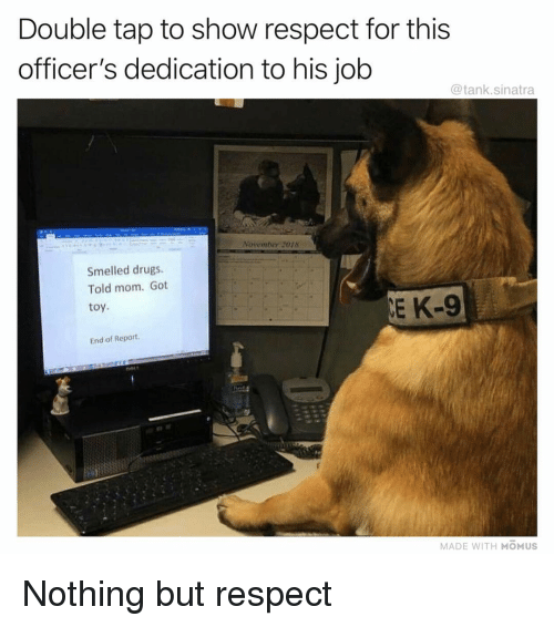 double tap: Double tap to show respect for this  officer's dedication to his job  @tank.sinatra  November 2018  Smelled drugs.  Told mom. Got  toy  E K-9  End of Report  MADE WITH MOMUS Nothing but respect