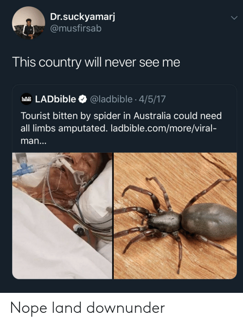 Tourist: Dr.suckyamarj  @musfirsab  This country will never see me  LADbible  @ladbible 4/5/17  LAD  BIBLE  Tourist bitten by spider in Australia could need  all limbs amputated. ladbible.com/more/viral-  man... Nope land downunder