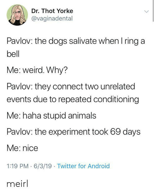Android, Animals, and Dogs: Dr. Thot Yorke  @vaginadental  Pavlov: the dogs salivate when I ring a  bell  Me: weird. Why?  Pavlov: they connect two unrelated  events due to repeated conditioning  Me: haha stupid animals  Pavlov: the experiment took 69 days  Me: nice  1:19 PM 6/3/19 Twitter for Android meirl