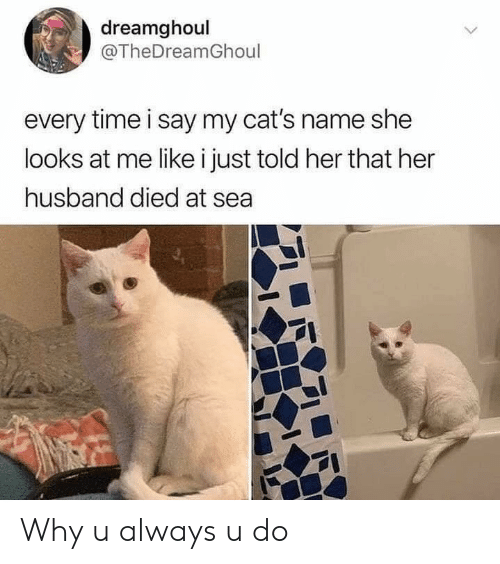 Cats, Time, and Husband: dreamghoul  @TheDreamGhoul  every time i say my cat's name she  looks at me like i just told her that her  husband died at sea Why u always u do