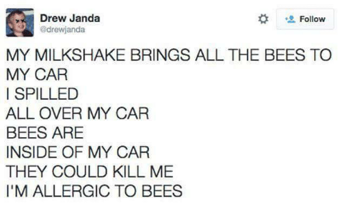 my car: Drew Janda  drewjanda  Follow  MY MILKSHAKE BRINGS ALL THE BEES TO  MY CAR  I SPILLED  ALL OVER MY CAR  BEES ARE  INSIDE OF MY CAR  THEY COULD KILL ME  I'M ALLERGIC TO BEES