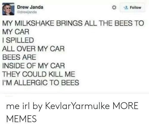 Allely: Drew Janda  #  Follow  drewjanda  MY MILKSHAKE BRINGS ALL THE BEES TO  MY CAR  I SPILLED  ALL OVER MY CAR  BEES ARE  INSIDE OF MY CAR  THEY COULD KILL ME  I'M ALLERGIC TO BEES me irl by KevlarYarmulke MORE MEMES