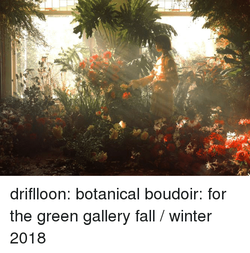 Fall, Tumblr, and Winter: driflloon:  botanical boudoir: for the green gallery fall / winter 2018