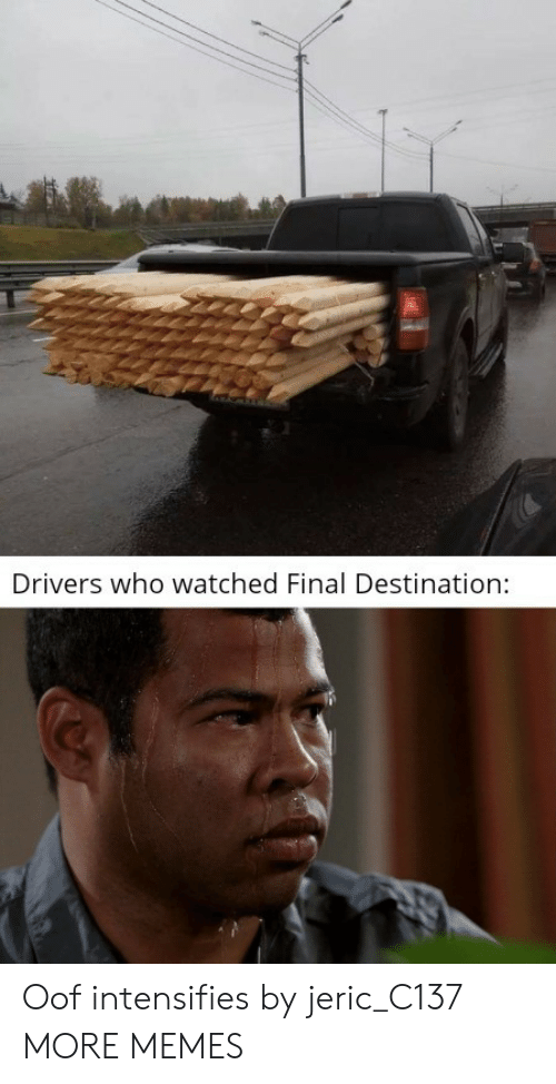 Dank, Memes, and Target: Drivers who watched Final Destination: Oof intensifies by jeric_C137 MORE MEMES