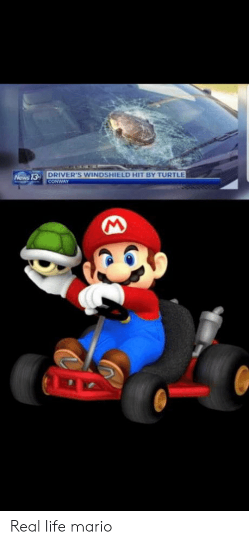 Mario: DRIVER'S WINDSHIELD HIT BY TURTLE  CONWAY  Nows 13- Real life mario