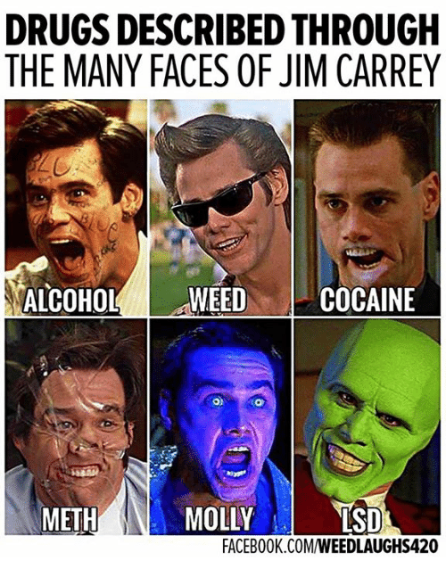 Drugs, Facebook, and Jim Carrey: DRUGS DESCRIBED THROUGH  THE MANY FACES OF JIM CARREY  ALCOHOL'! . WEED  COCAINE  METH  LSD  FACEBOOK.COM/WEEDLAUGHS420