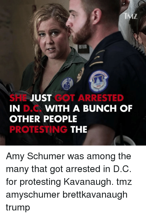 Amy Schumer, Memes, and Trump: DS  SHL JUST GOT ARRESTED  IN  OTHER PEOPLE  PROTESTING  D.C  WITH A BUNCH OF  THE Amy Schumer was among the many that got arrested in D.C. for protesting Kavanaugh. tmz amyschumer brettkavanaugh trump