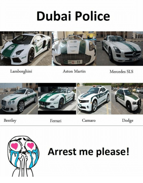 Ferrari, Martin, and Mercedes: Dubai Police  Lamborghini  Aston Martin  Mercedes SLS  Bentley  Dodge  Camaro  Ferrari  Arrest me please!