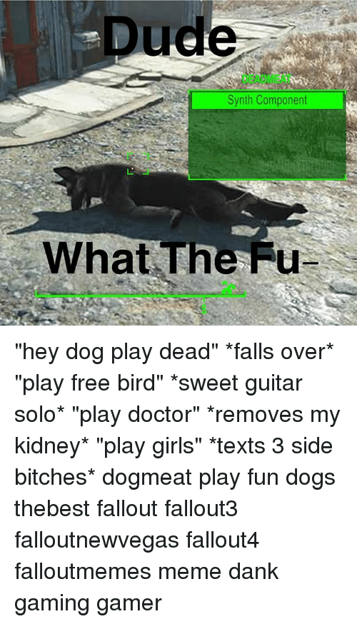 """fued: Dude  DEADMEAT  Synth Component  What The Fu """"hey dog play dead"""" *falls over* """"play free bird"""" *sweet guitar solo* """"play doctor"""" *removes my kidney* """"play girls"""" *texts 3 side bitches* dogmeat play fun dogs thebest fallout fallout3 falloutnewvegas fallout4 falloutmemes meme dank gaming gamer"""
