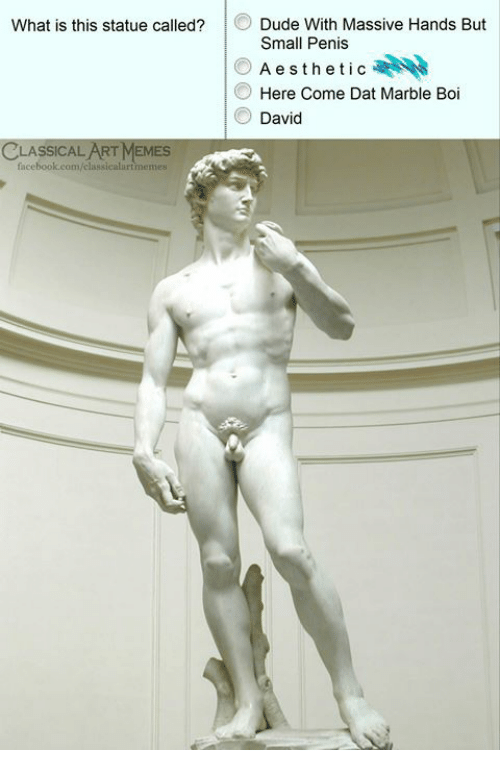 Dude, Facebook, and Memes: Dude With Massive Hands But  Small Penis  Aesthetic  Here Come Dat Marble Boi  David  What is this statue called?  CLASSICAL ART MEMES  facebook.com/classicalurtmemes