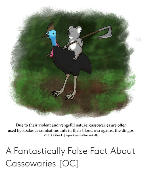 tapas: Due to their violent and vengeful nature, cassowaries are often  used by koalas as combat mounts in their blood war against the dingos.  2018 Z Gosck | tapas.io/series/fantastically A Fantastically False Fact About Cassowaries [OC]